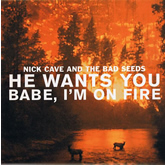 """Nick Cave & The Bad Seeds 'He Wants You / Babe, I'm On Fire' 10"""" artwork"""
