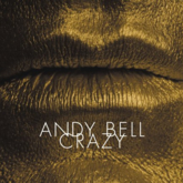 Andy Bell 'Crazy' artwork
