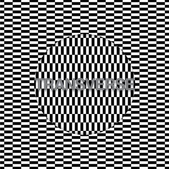 CarterTuttiVoidAlbumFront_6001-560x560